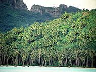 Maupiti, Polinesia Francesa. Author and Copyright: Marco Ramerini.