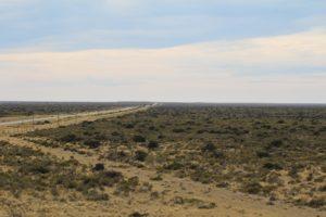 El paisaje semidesértico de la Península Valdés, Argentina. Autor y Copyright Marco Ramerini