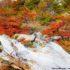 Chorrillo del Salto, El Chalten, Parque Nacional Los Glaciares, Argentina. Autor y Copyright Marco Ramerini.