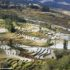 Los campos de arroz, Yuanyang, Yunnan, China. Autor y Copyright Marco Ramerini..