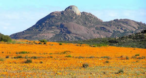 Namaqualand, Sudáfrica. Author and Copyright: Marco Ramerini