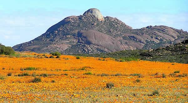 Namaqualand, Sudáfrica. Author and Copyright: Marco Ramerini
