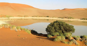 Sossusvlei, desierto de Namib, Namib-Naukluft, Namibia. Autor y Copyright Marco Ramerini ..