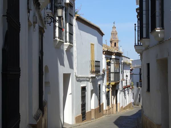 Carmona, Andalucía, España. Autor y Copyright Liliana Ramerini